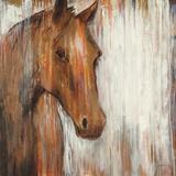 Painted Pony Kunstdrucke von Elizabeth Jardine