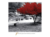Lugna ögonblick|Quiet Moments Poster