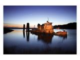 Gold Beach Sunk Boat Stampe di Shane Settle
