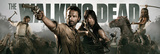 The Walking Dead - Banner Affischer