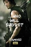Walking Dead - Daryl Survive Kunstdrucke
