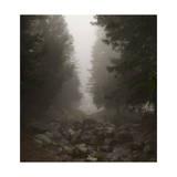 Rocks and Fountain in Fog Fotografisk tryk af Henri Silberman