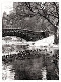 The Gapstow Bridge of Central Park in Winter, Manhattan in New York City Impressão fotográfica por Philippe Hugonnard