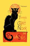 Chat Noir Pósters
