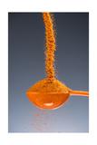 1 Tablespoon Cayenne Pepper Fotografie-Druck von Steve Gadomski