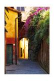 Colorful Alley in Portofino Stampa fotografica di George Oze