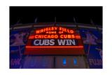 Cubs Win Fotografie-Druck von Steve Gadomski