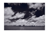 Midwest Corn Field BW Fotografie-Druck von Steve Gadomski