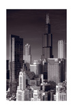 Chicago Loop Towers BW Fotografie-Druck von Steve Gadomski