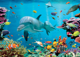 Tropical Underwater Ocean Stampe
