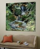 Cascades en sous-bois Prints by Sylvia Audet