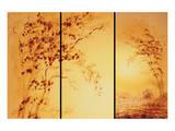 Tangerine Dawn Print by Fai Ryble