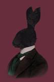 Rabbit Man Stampa giclée di Clara Wells