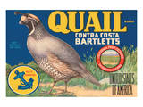 Quail Brand Contra Costa Bartletts Affiche