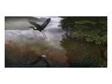 Taking Flight Print by Steve Hunziker