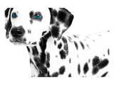 Dalmatian Date II Poster