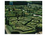 Somptuous Garden III Art