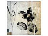 Leaves and Stems on Texture I Prints by Catherine Kohnke