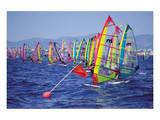 Surf Regatta Start Line Posters
