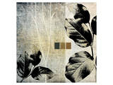 Leaves and Stems on Texture II Prints by Catherine Kohnke