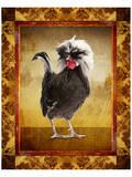 Gallo grigio Poster