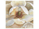 Magnolia Masterpiece II Prints by Louise Montillio