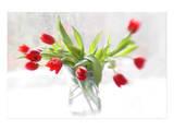 Tulips in Winter Kunstdrucke von Judy Stalus