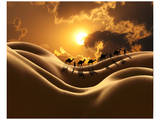 Camel Back Dream Affiches par Richard Desmarais
