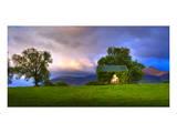 Vine Covered Cow Barn, Ireland Poster by Richard Desmarais