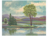 River Scape I Poster von Victor Valla