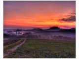 Val d'Arbia at Dawn Affiche par Richard Desmarais
