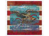 Eagle II Strip Stampe di Alan Hopfensperger