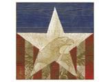 Stars&Stripes Prints by Alan Hopfensperger