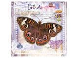 Butterfly Artifact Lilac Poster by Alan Hopfensperger