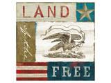 Eagle I block Prints by Alan Hopfensperger