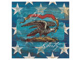 Eagle I Stars Stampe di Alan Hopfensperger