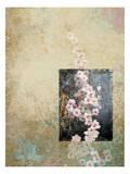 Cherry Blossoms 4 Posters av Kurt Novak