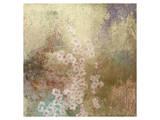 Cherry Blossoms 1 Kunstdrucke von Kurt Novak