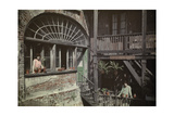 Women Peer Out of their Windows and Balconies in the French Quarter Reproduction photographique par Edwin L. Wisherd