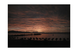 A Sunset over the California Shores Photographic Print by Franklin Price Knott