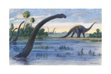 The Diplodocus Could Grow Up to Seventy-Five Feet Long Giclée-tryk af Charles R. Knight