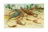 Prehistoric Eurypterids are Similar to Today's Horseshoe Crabs Lámina giclée por Charles R. Knight