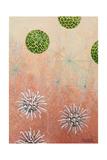 Plankton Halosphaera, Top, Chaetoceras, and Rhabdosphaera, Bottom Giclée-Druck von William H. Crowder