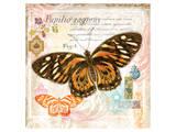 Butterfly Artifact Pink Art by Alan Hopfensperger