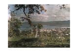 A View of Montego Bay Fotografie-Druck von Jacob J. Gayer