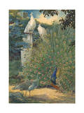 A Painting of a Pair of Indian Peafowl and a Pair of White Peafowl Reproduction procédé giclée par Hashime Murayama