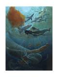 Marine Animals of the Kaikoura Canyon, a Trench Off South Island Giclée-tryk af John Dawson