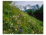 Wilder Kaiser Mountain Austria Posters