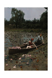 A Couple in a Boat Paddle on a Lily Pond and Collect Flowers Fotografisk trykk av Charles Martin
