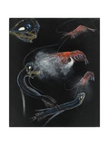 Painting of Shrimp and Fish of the Abyss Giclée-tryk af E.J. Geske